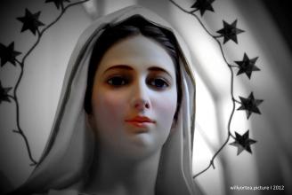 """A los que estáis enamorados/as de Nuestra Madre María, ¡que no os de vergüenza decirlo!. Hoy es 15 de agosto, ¡díselo a Ella con un """"me gusta""""!. ¿Cómo eres de verdad, María? Cuanto deseo ver tu belleza... veo tus obras y siento el Amor que nos tienes... pero, ¡es poco!...¡quiero más! - Foto: willyortea.picture"""